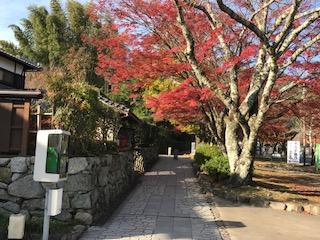 坂本ケーブル駅まで歩く