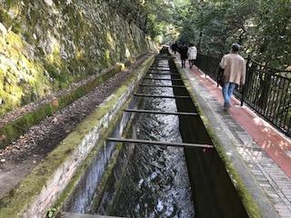 水路を歩く
